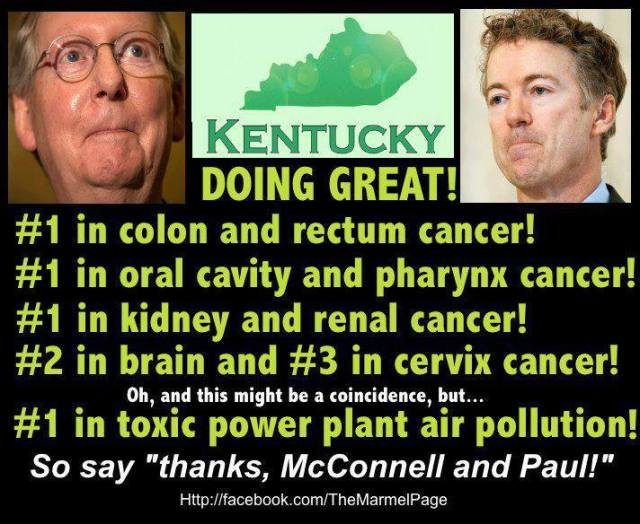 ST KY BASEBALL CARDS - GOP - RAND PAUL - Mitch McConnell - KENTUCKY Firsts