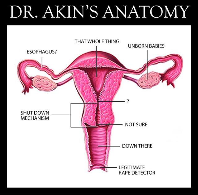 1_ ST MO TODD AKIN WOMENS RIGHTS UTERUS Anatomy