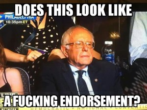 GREEN PARTY Bernie Sanders - Stoic - Does this look like a fucking endorsement